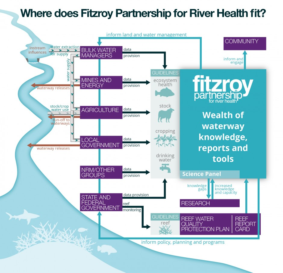 Graphic showing Fitzroy Partnership for River Health and where it fits in waterway health monitoring and reporting.