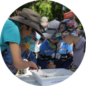 School children learn about waterbugs at a water sampling session.