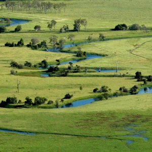 The Fitzroy Basin waterways are adjacent to valuable farming and grazing land.