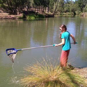 Partnership staff member undertakes water sampling in the Nogoa River near Emerald.